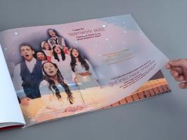 Brochure Re-invigorates Capital Campaign